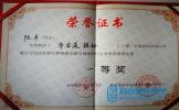 彭山一小陈平勇夺第四届全国小学数学文化优质课大赛一等奖