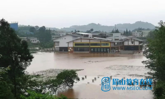 双小幼儿园操场被淹.jpg
