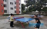 东坡区崇礼小学开展篮球、乒乓球兴趣小组活动